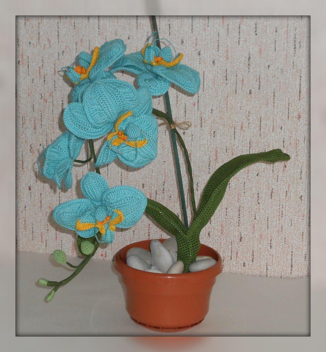 Орхидея в горшке вязаная крючком фото