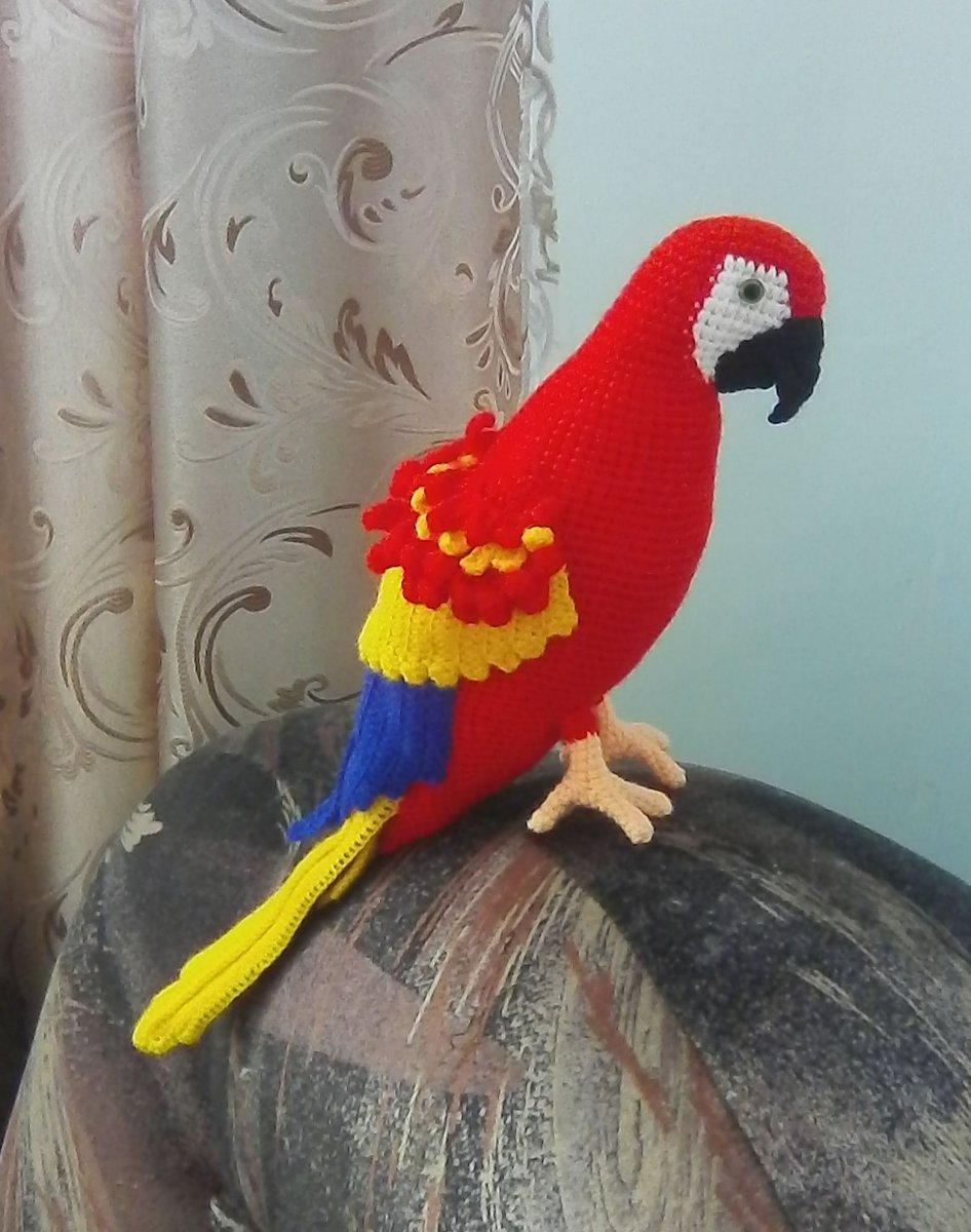 Связать большого попугая ара схема